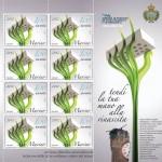 San Marino, francobollo per il sisma in Emilia