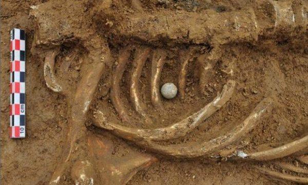 Waterloo, trovato lo scheletro di un soldato