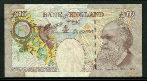 10_pounds_darwin