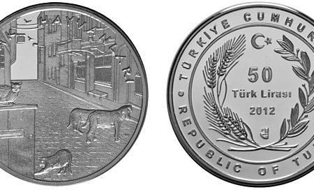 Turchia, moneta per cani e gatti randagi