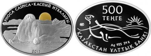 kazakistan_2013_foca