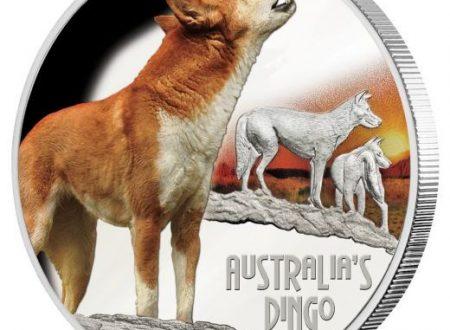 Un'oncia d'argento per il dingo