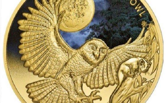 Un'oncia d'oro per la civetta reale