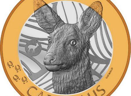 Svizzera, 10 franchi 2019 per il capriolo