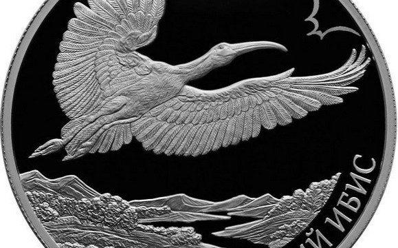 Russia, 2 rubli 2019 per l'ibis crestato