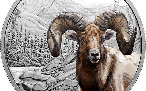 Canada, moneta per la pecora delle Montagne Rocciose